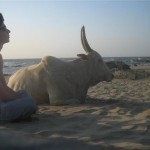 Shane with a bull on a beach in India. Animals are pure positive energy.